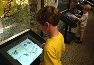Hobbs State Park visitor center features Ozark focused exhibits including interactive kiosks and classroom space