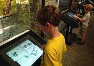 Hobb's State Park features Ozark focused exhibits including interactive kiosks, classroom space, and other kid-friendly exhibits.