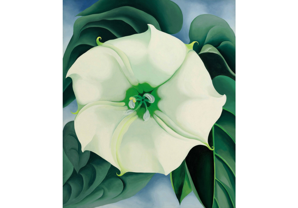 The presentation in this exhibition of several O'Keeffe's most-loved and important artworks gives viewers an entry point into the work of this group of emerging artists, selected for their unique explorations of some of O'Keeffe's most powerful themes, in