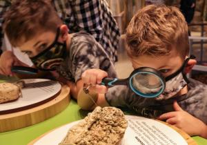 Ozark Highland Nature Center Interactive Exhibitss