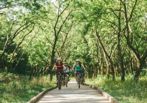 Lake Atalanta Mountain Biking Trails