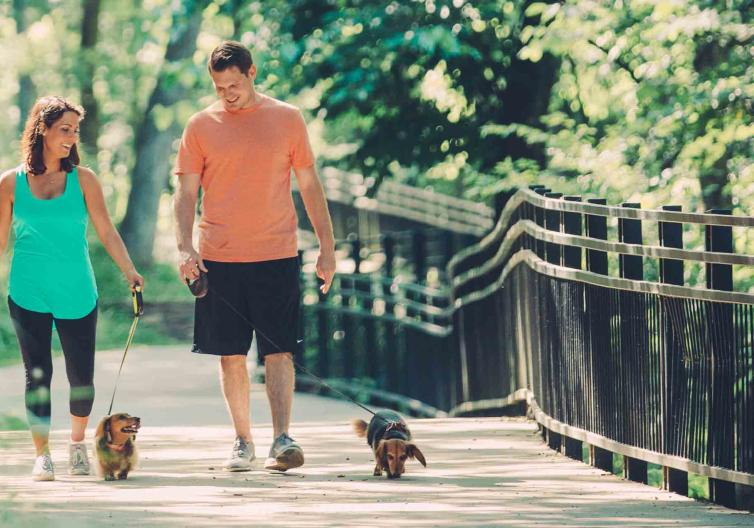 Lake Atalanta is the perfect place to take a walk, run, or hike with your dog. Dogs are allowed on leashes through the park.